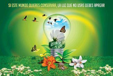 Dia-del-Medio-Ambiente-17